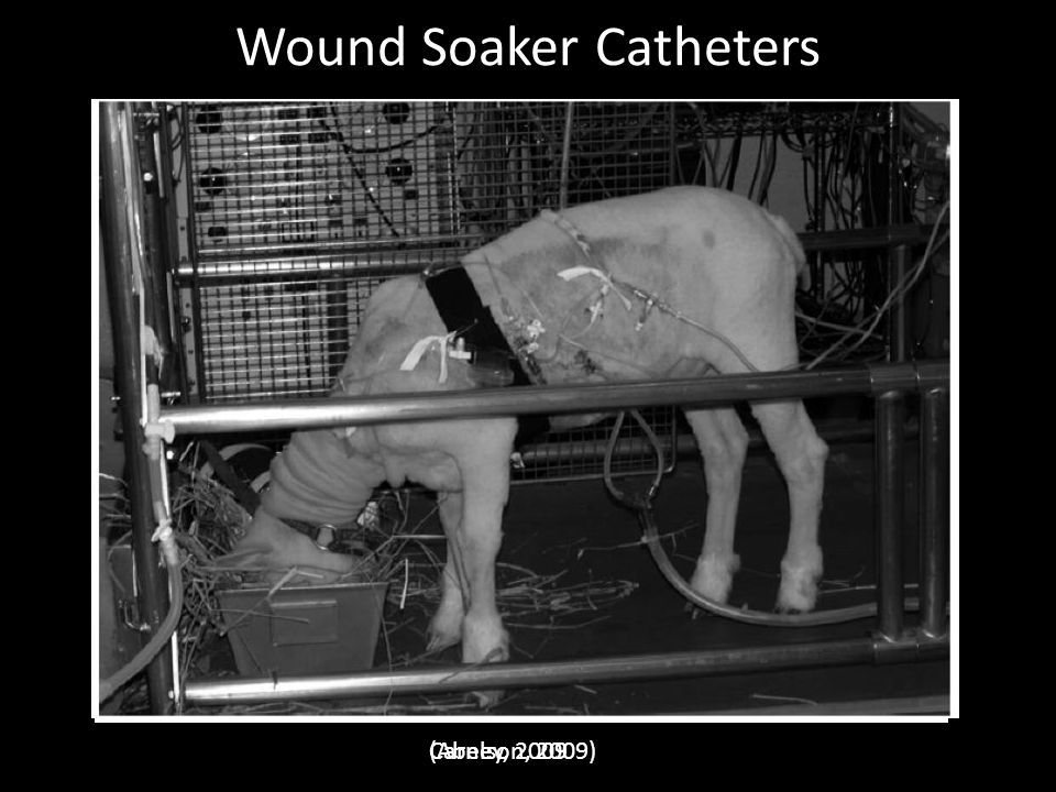 Wound Soaker Catheters
