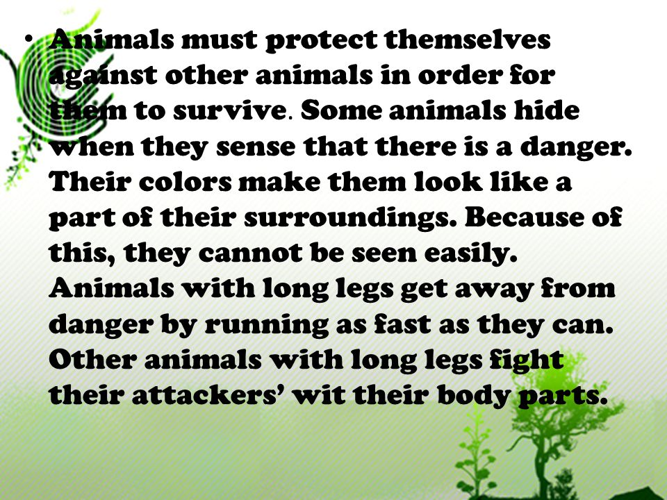 Animals must protect themselves against other animals in order for them to survive.