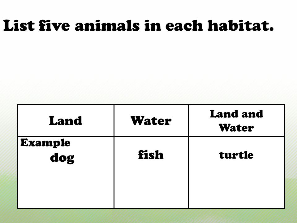 List five animals in each habitat.