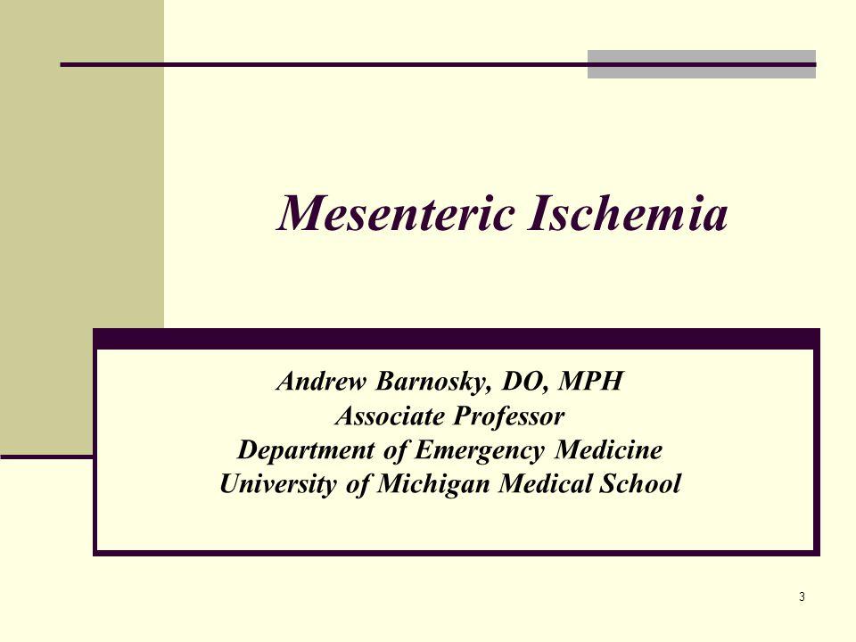 Department of Emergency Medicine University of Michigan Medical School