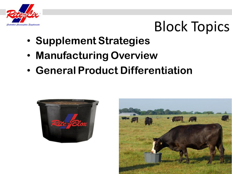 Block Topics Supplement Strategies Manufacturing Overview