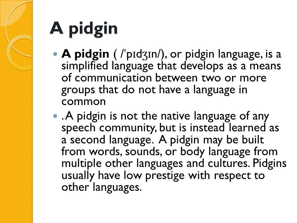 A pidgin
