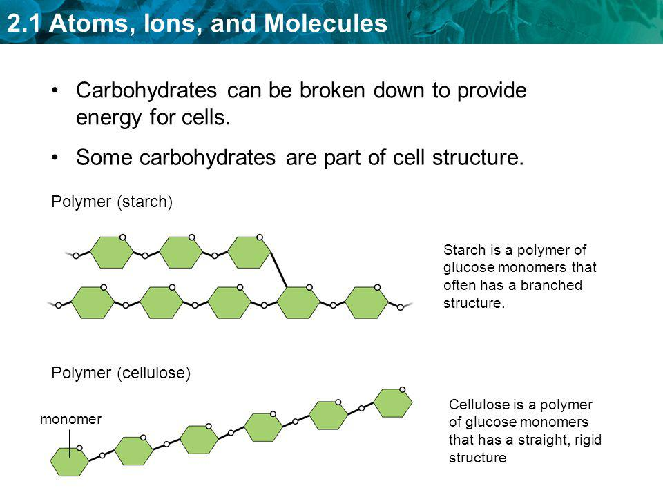 Carbohydrates can be broken down to provide energy for cells.
