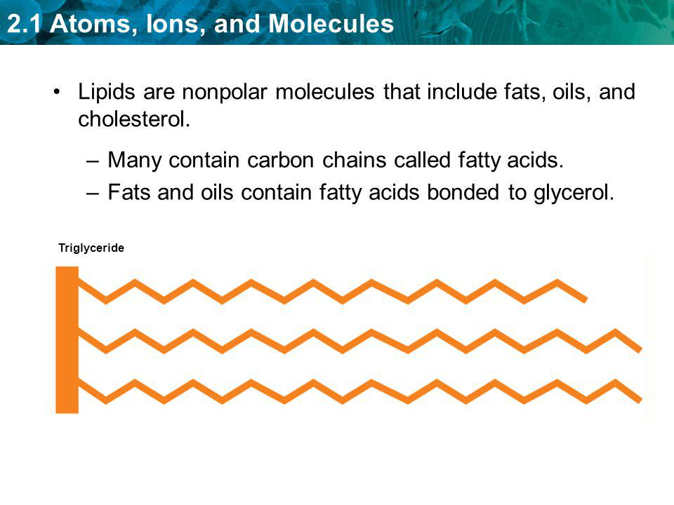 Many contain carbon chains called fatty acids.