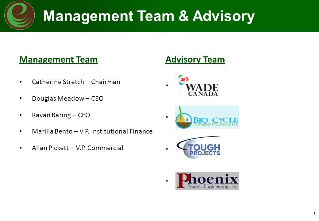 Management Team & Advisory