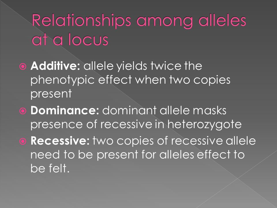 Relationships among alleles at a locus