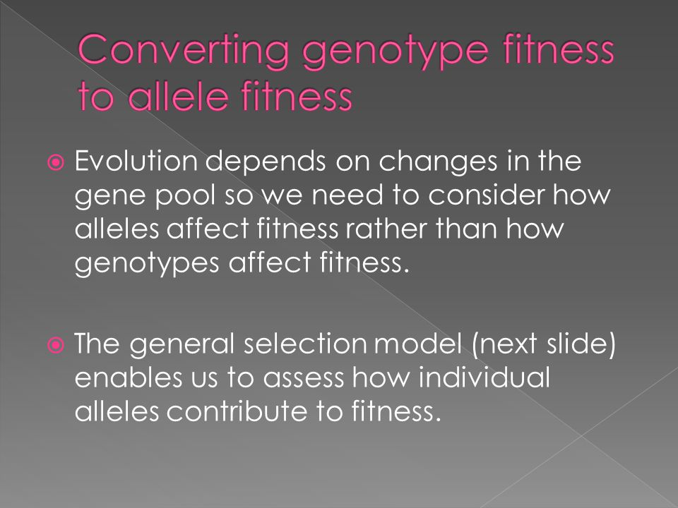 Converting genotype fitness to allele fitness