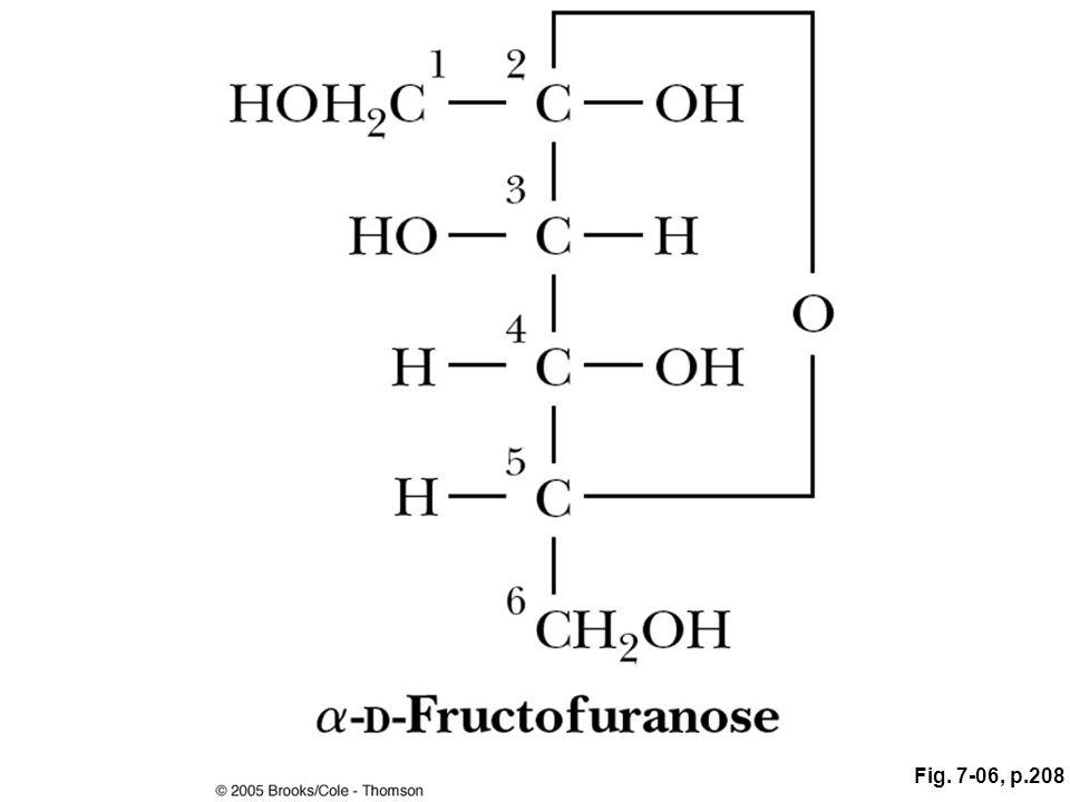 ANIMATED FIGURE 7.6 The linear form of D-fructose undergoes an intramolecular reaction to form a cyclic hemiketal. See this figure animated at http://chemistry. brookscole.com/ggb3