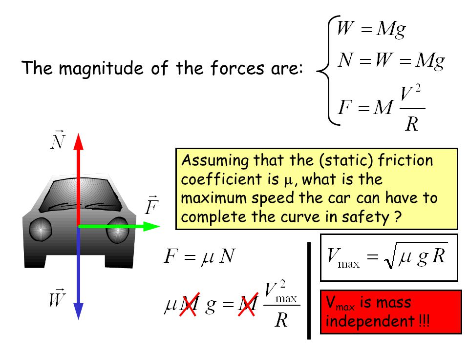 The magnitude of the forces are: