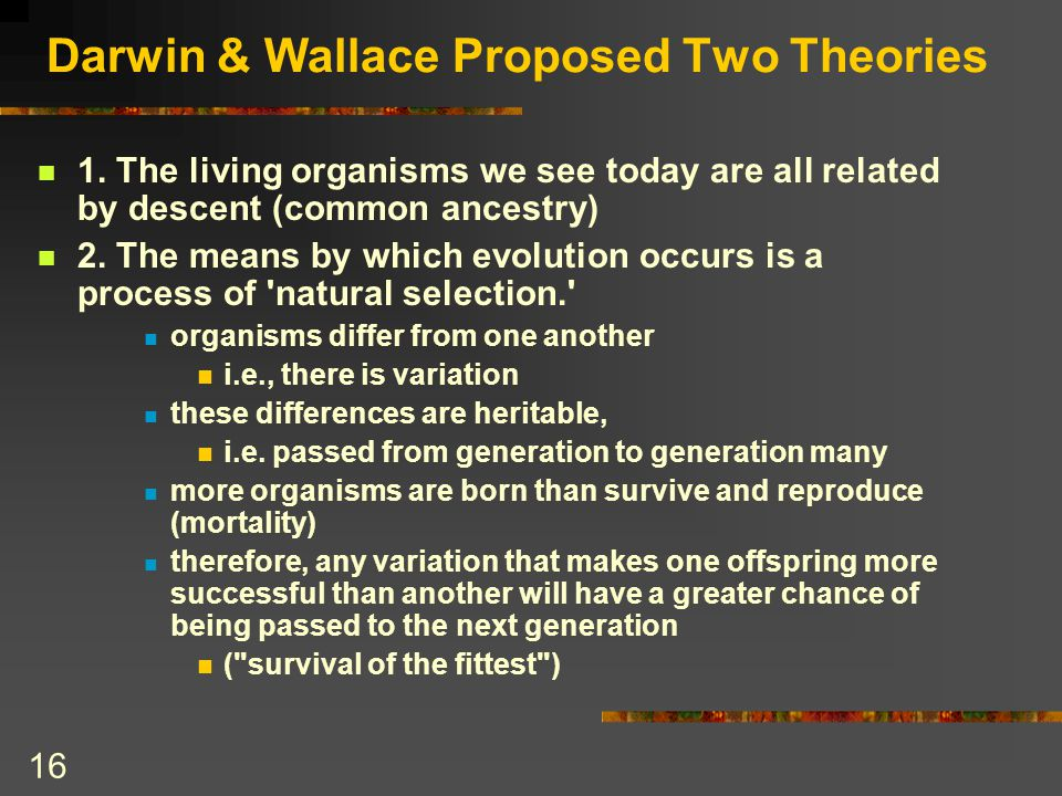 Darwin & Wallace Proposed Two Theories