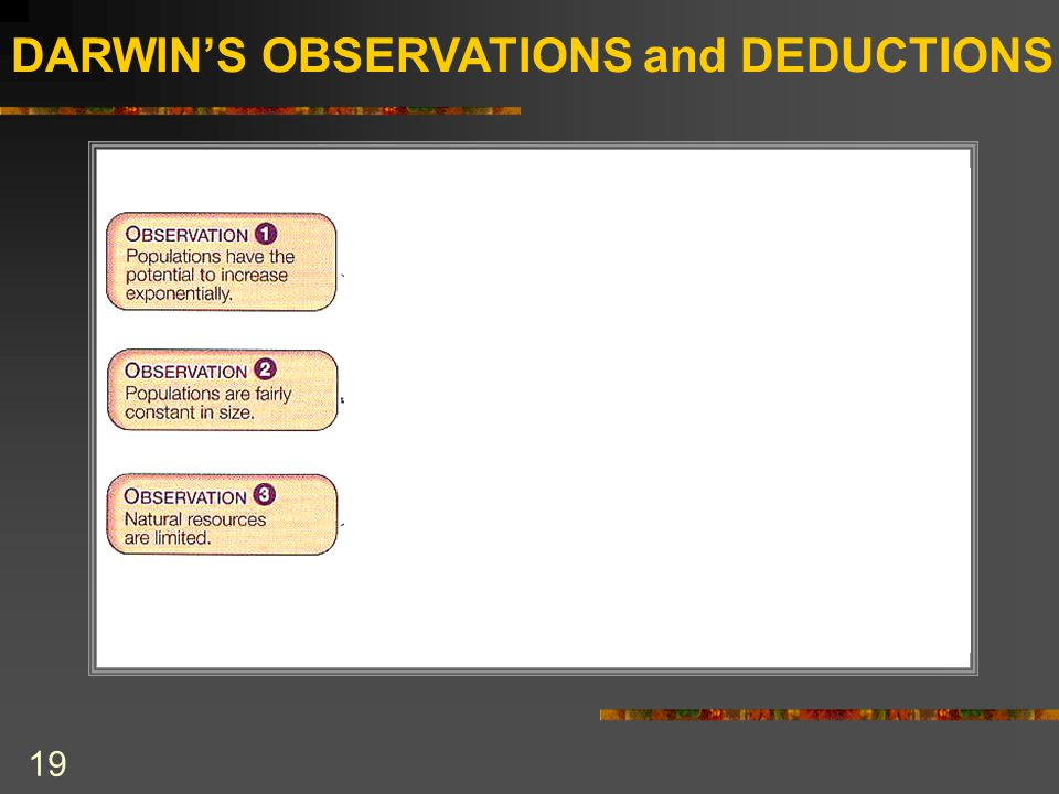 DARWIN'S OBSERVATIONS and DEDUCTIONS