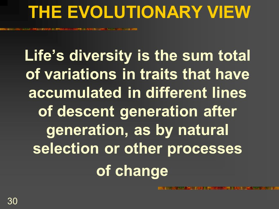 THE EVOLUTIONARY VIEW of change