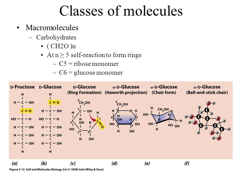 Classes of molecules Macromolecules Carbohydrates ( CH2O )n