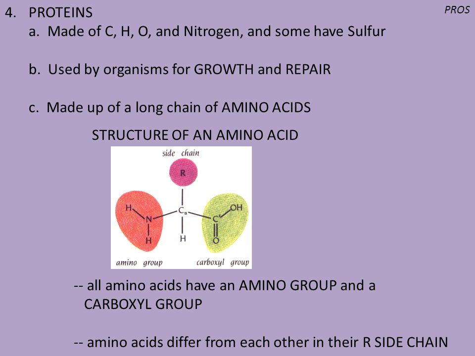 a. Made of C, H, O, and Nitrogen, and some have Sulfur
