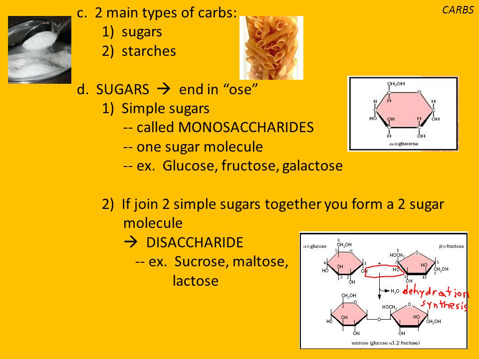 -- called MONOSACCHARIDES -- one sugar molecule