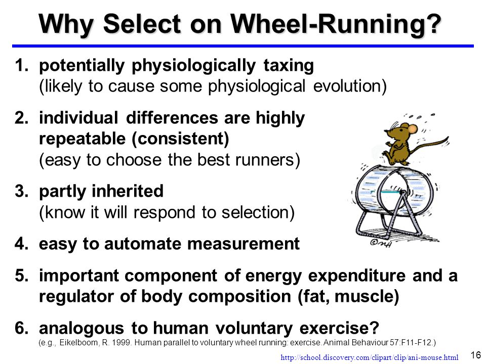 Why Select on Wheel-Running