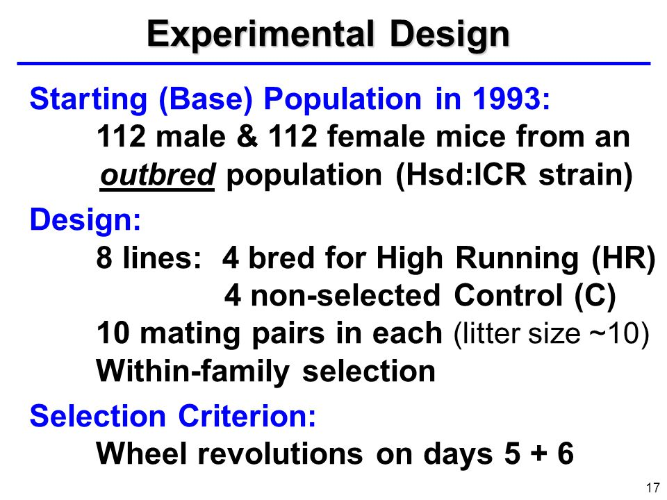 Experimental Design Star ting (Base) Population in 1993: 112 male & 112 female mice from an outbred population (Hsd:ICR strain)
