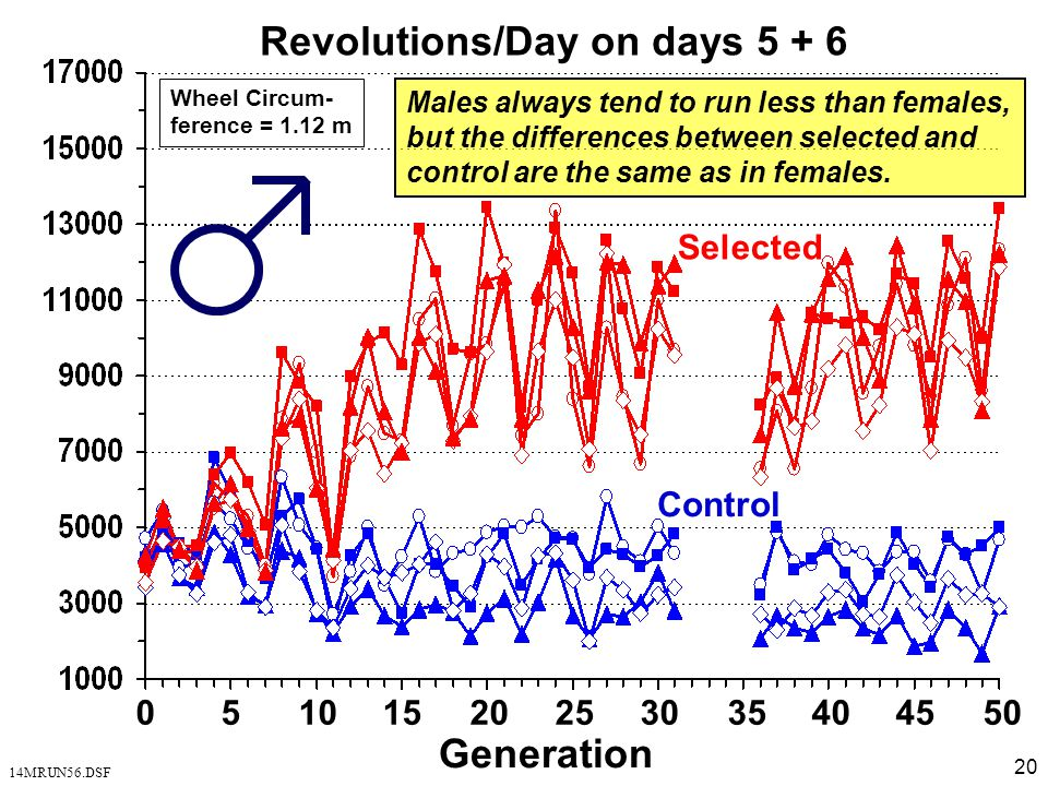 Revolutions/Day on days 5 + 6