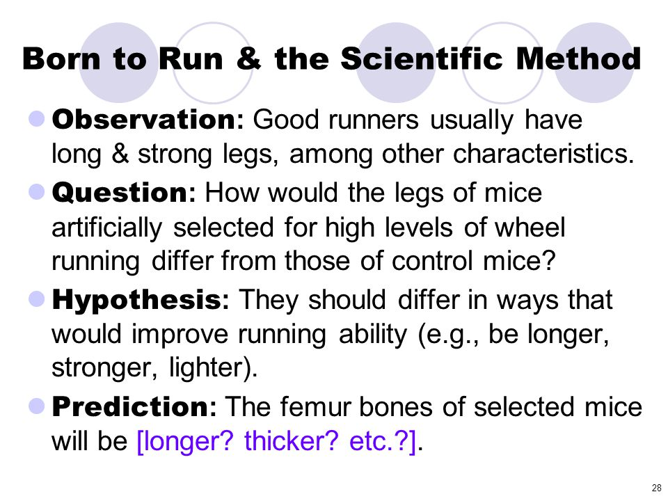 Born to Run & the Scientific Method