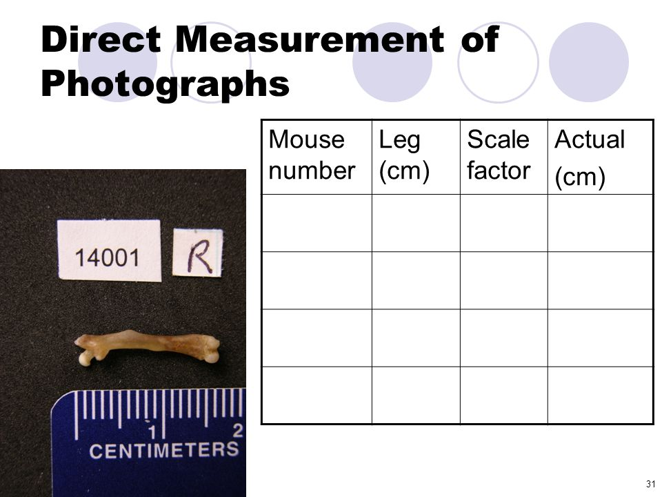 Direct Measurement of Photographs