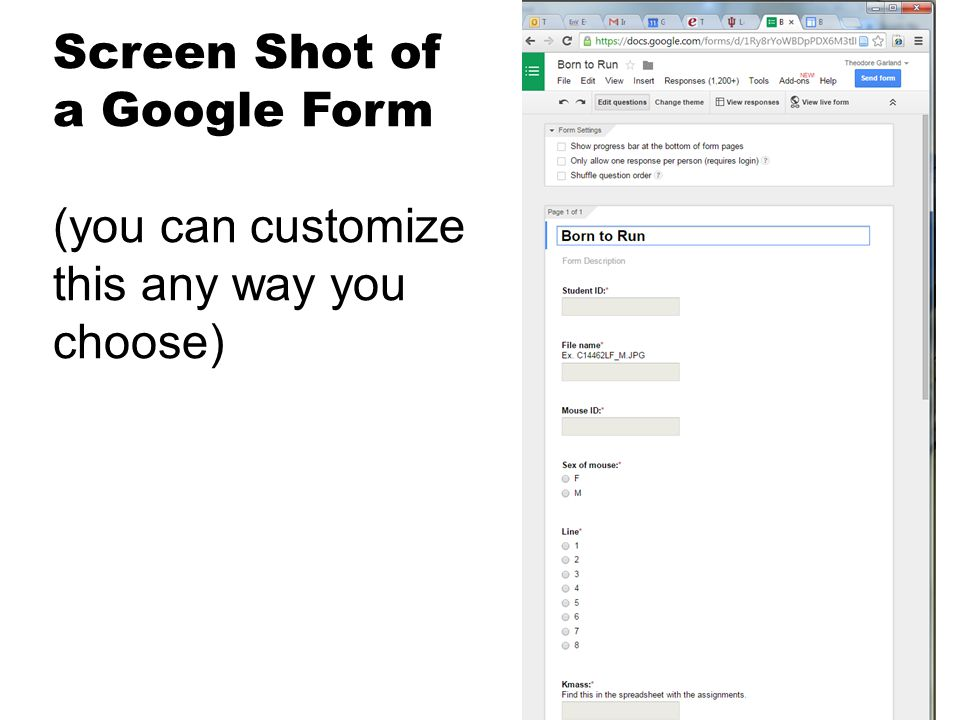Screen Shot of a Google Form (you can customize this any way you choose)