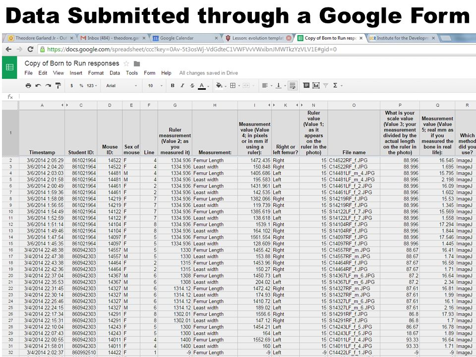 Data Submitted through a Google Form