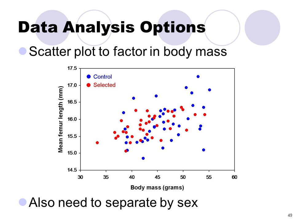 Data Analysis Options Scatter plot to factor in body mass