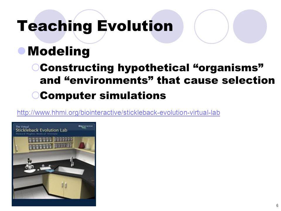 Teaching Evolution Modeling