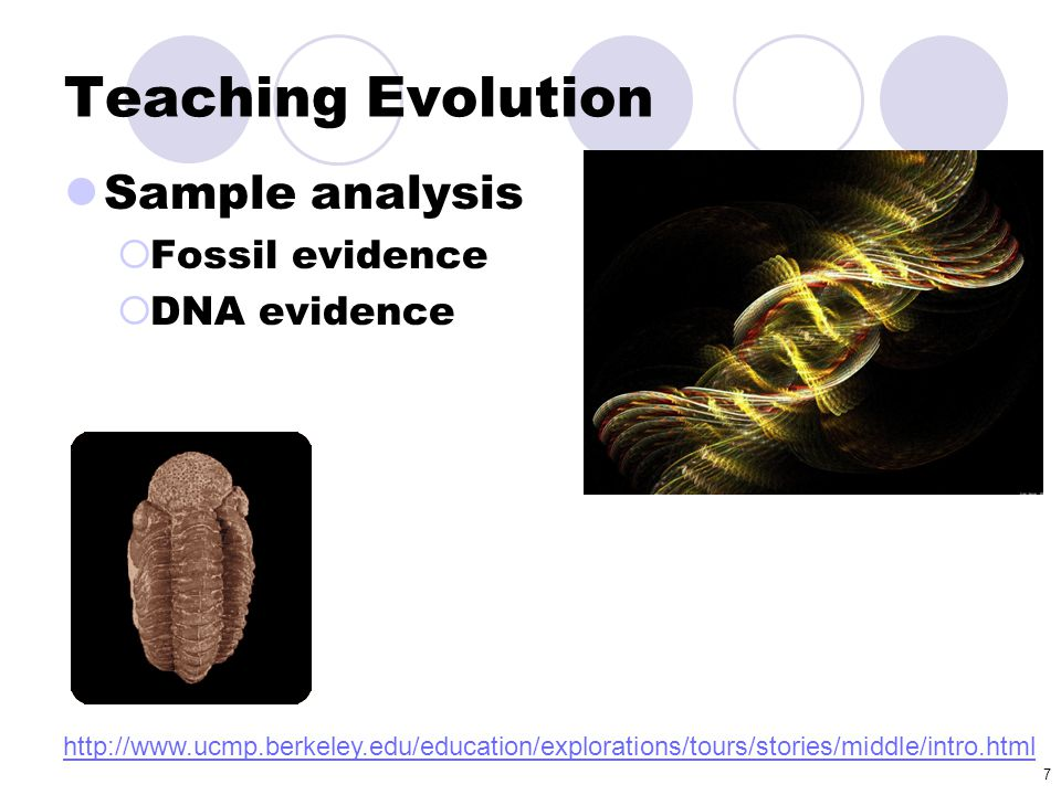 Teaching Evolution Sample analysis Fossil evidence DNA evidence