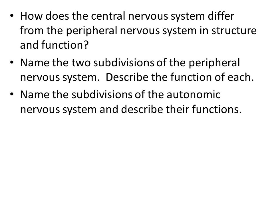 How does the central nervous system differ from the peripheral nervous system in structure and function