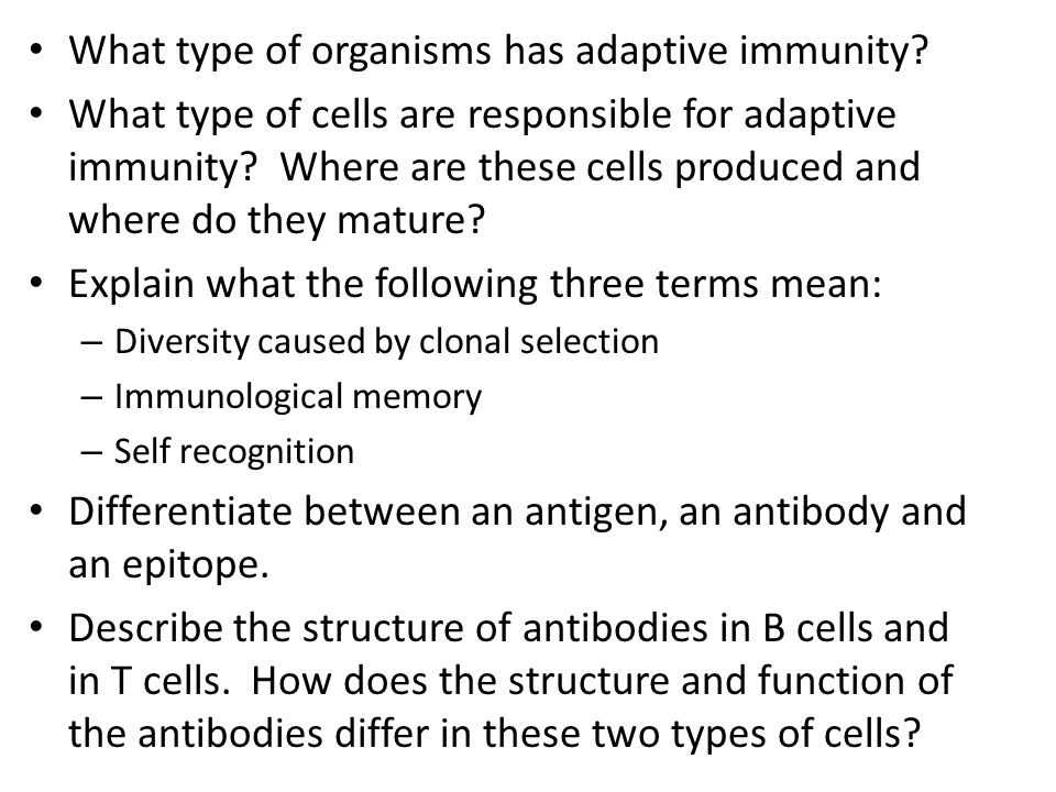 What type of organisms has adaptive immunity
