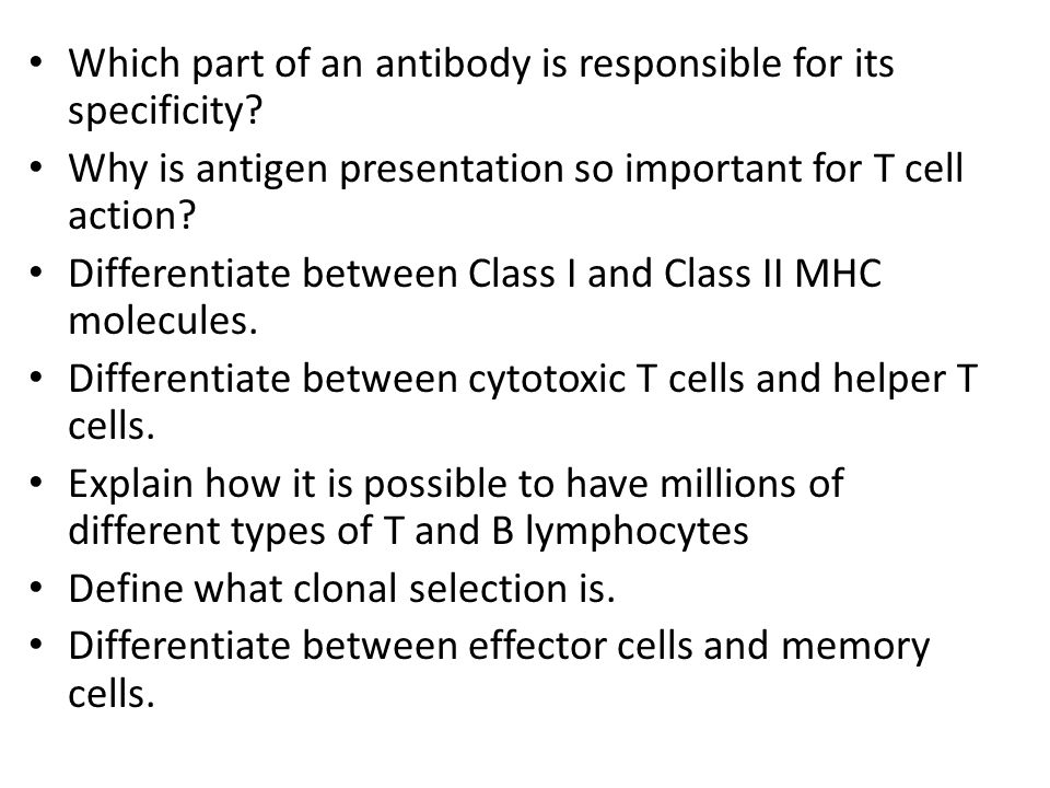Which part of an antibody is responsible for its specificity