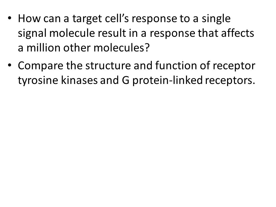 How can a target cell's response to a single signal molecule result in a response that affects a million other molecules
