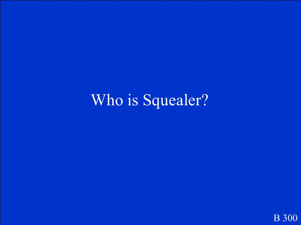 Who is Squealer B 300