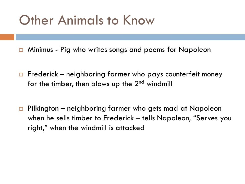 Other Animals to Know Minimus - Pig who writes songs and poems for Napoleon.