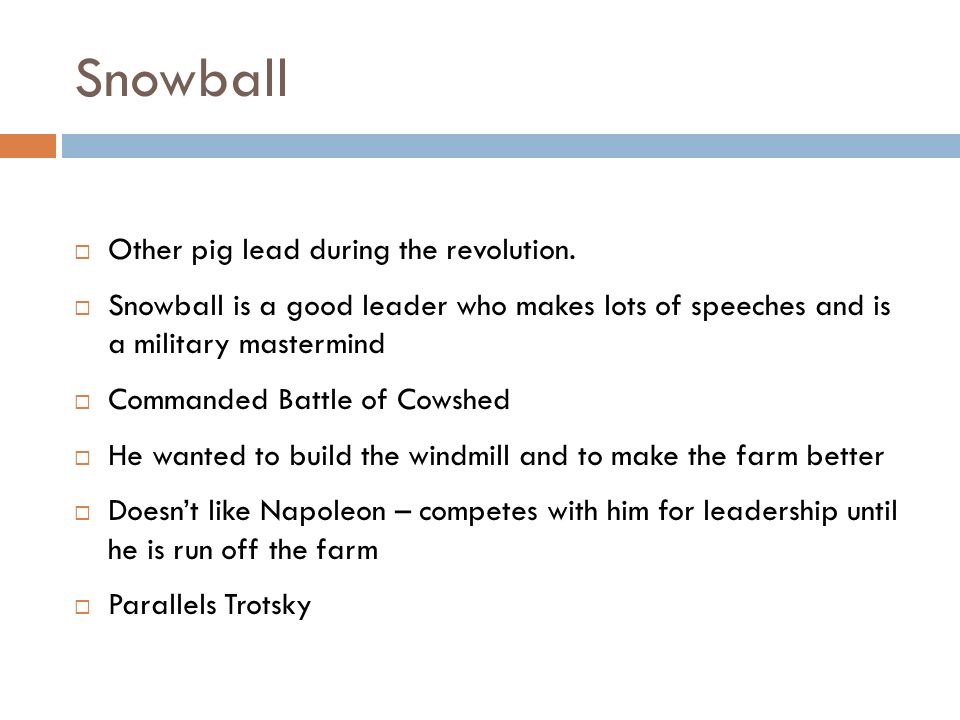 Snowball Other pig lead during the revolution.