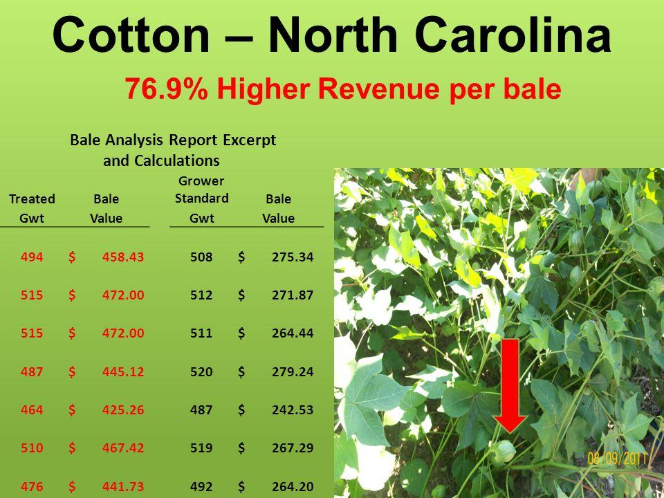 Cotton – North Carolina