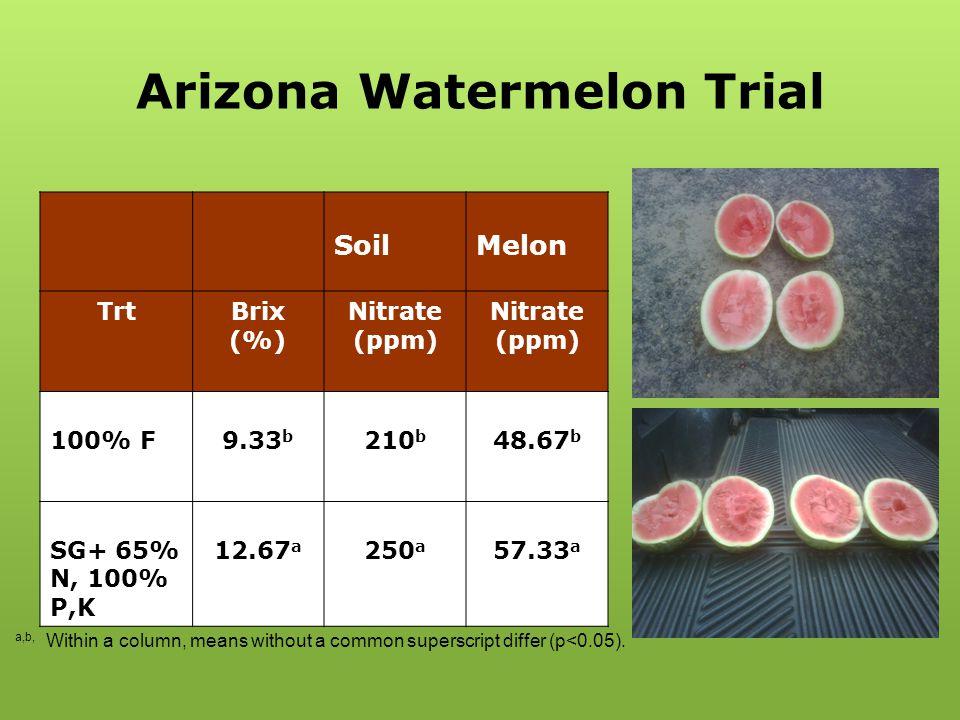 Arizona Watermelon Trial