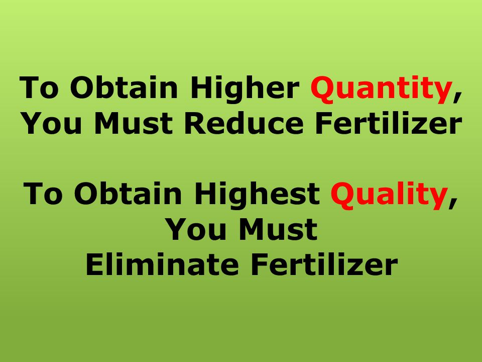 To Obtain Higher Quantity, You Must Reduce Fertilizer To Obtain Highest Quality, You Must Eliminate Fertilizer