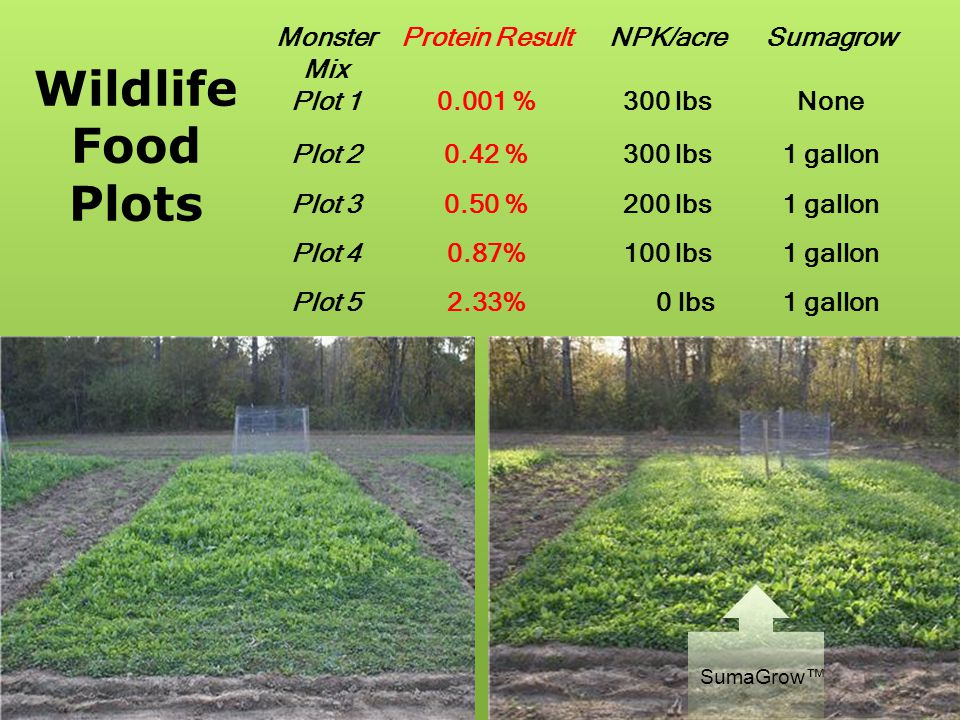 Wildlife Food Plots Monster Mix Protein Result NPK/acre Sumagrow