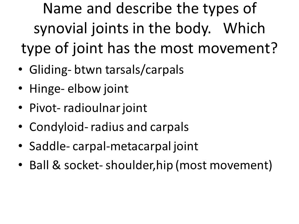 Name and describe the types of synovial joints in the body