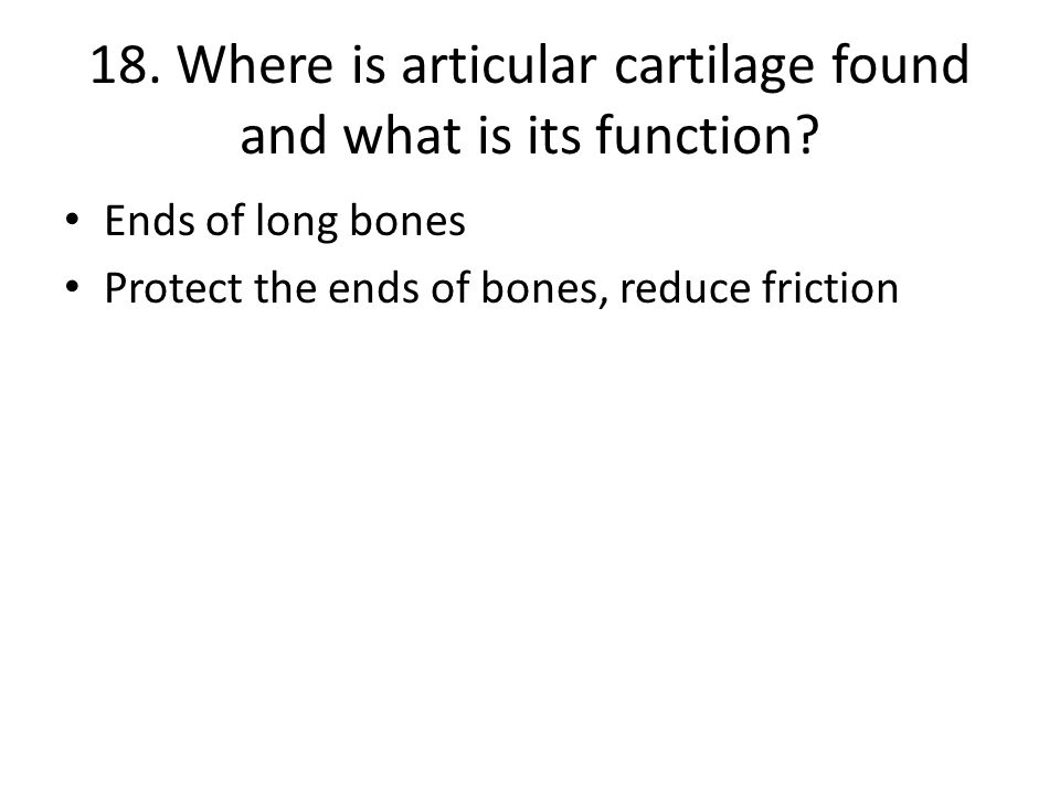 18. Where is articular cartilage found and what is its function