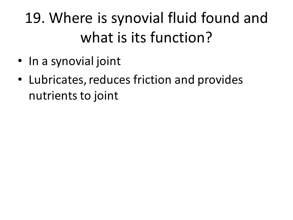 19. Where is synovial fluid found and what is its function