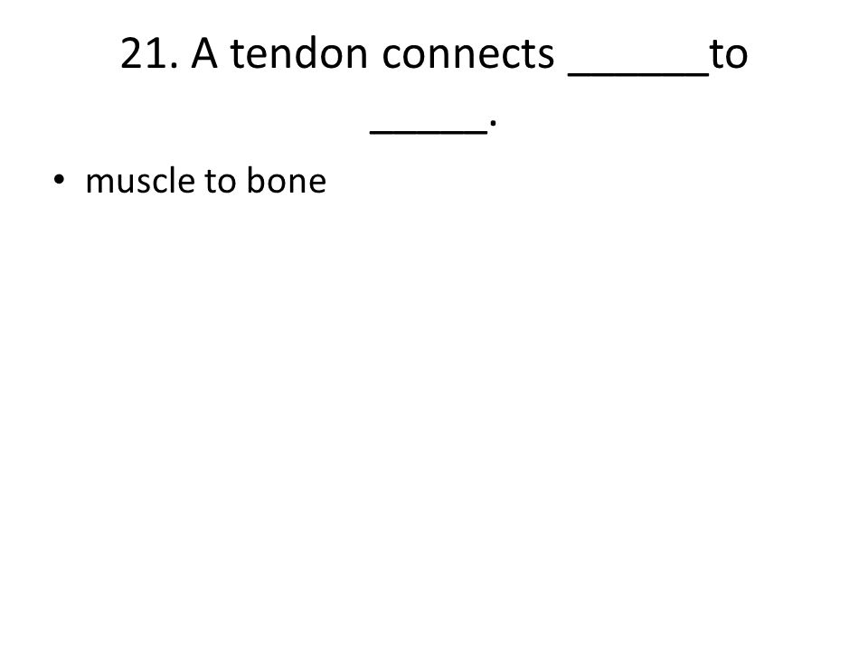 21. A tendon connects ______to _____.