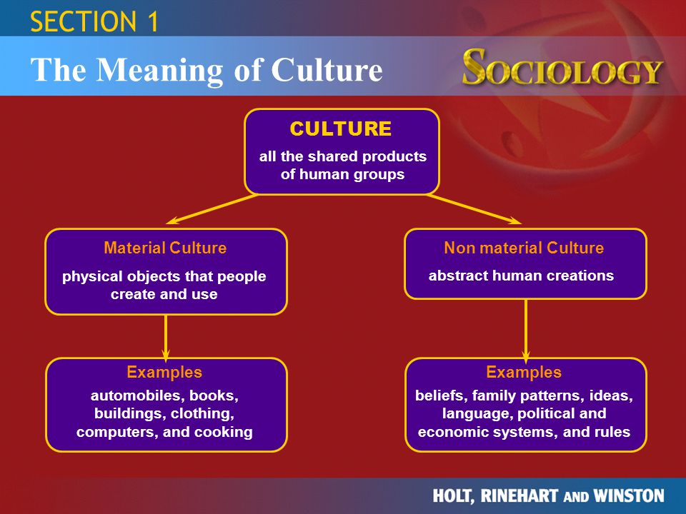 The Meaning of Culture SECTION 1 CULTURE Material Culture