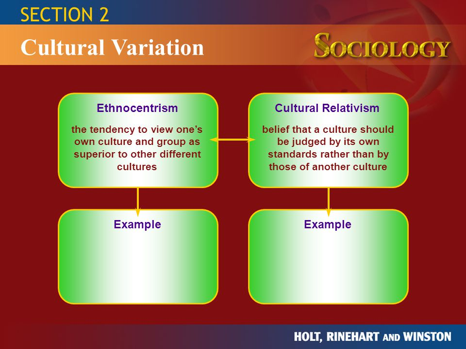 Cultural Variation SECTION 2 Ethnocentrism Cultural Relativism Example