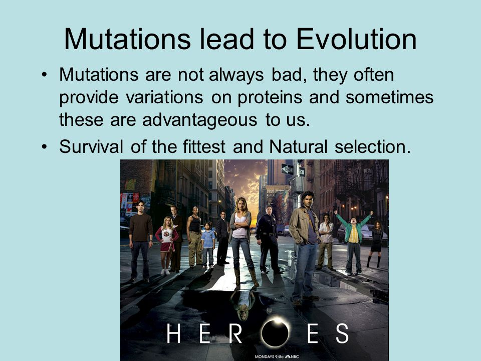 Mutations lead to Evolution