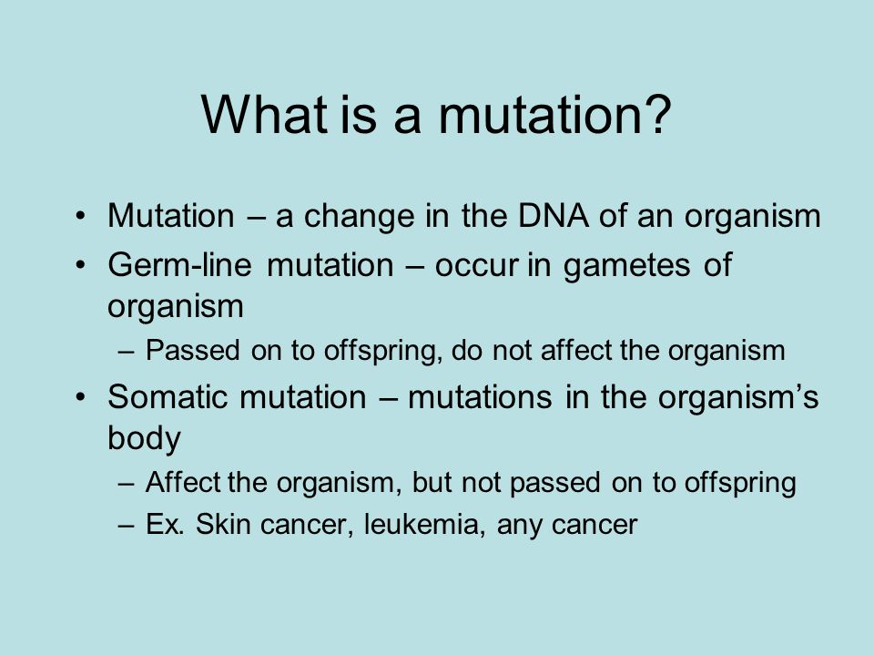 What is a mutation Mutation – a change in the DNA of an organism