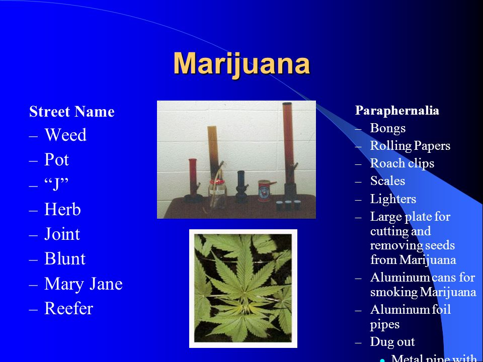 Marijuana Weed Pot J Herb Joint Blunt Mary Jane Reefer Street Name