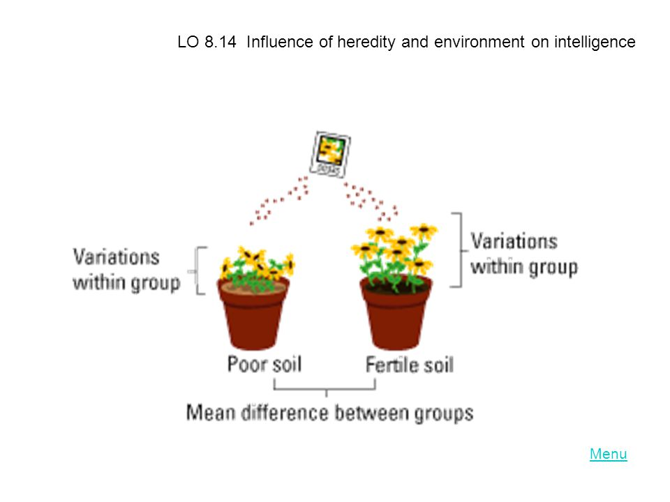 LO 8.14 Influence of heredity and environment on intelligence